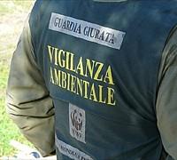 vigilanza-ambientale_01